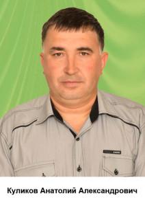 Куликов Анатолий Александрович